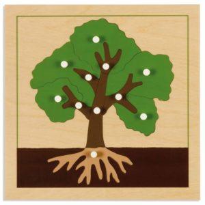 Puzzle lemn educativ - botanica - arbore - Montessori original