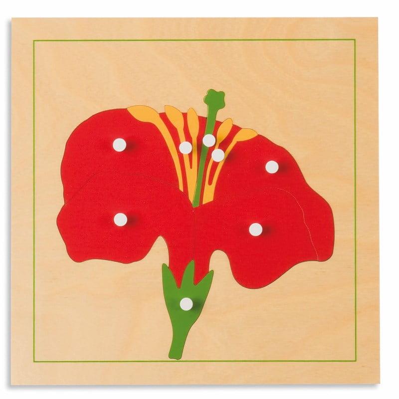 Puzzle lemn educativ - botanica - floare - Montessori original