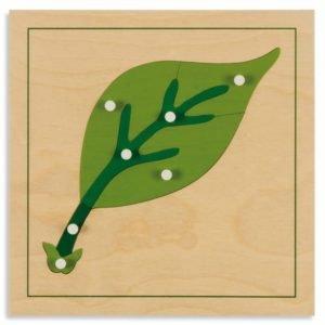Puzzle lemn educativ - botanica - frunza - Montessori original