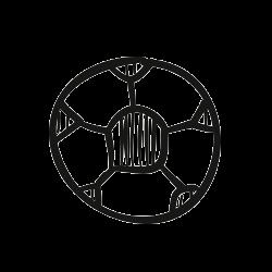 Sport şi Mişcare