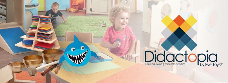 Serviciile Didactopia - consiliere pentru echiparea si dotarea gradinitelor, cluburilor pentru copii si zonelor de joaca, si pentru jocuri si jucarii educationale premium
