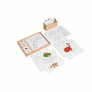 Botany Puzzle Activity Set-produs original Nienhuis Montessori-prin Didactopia by Evertoys