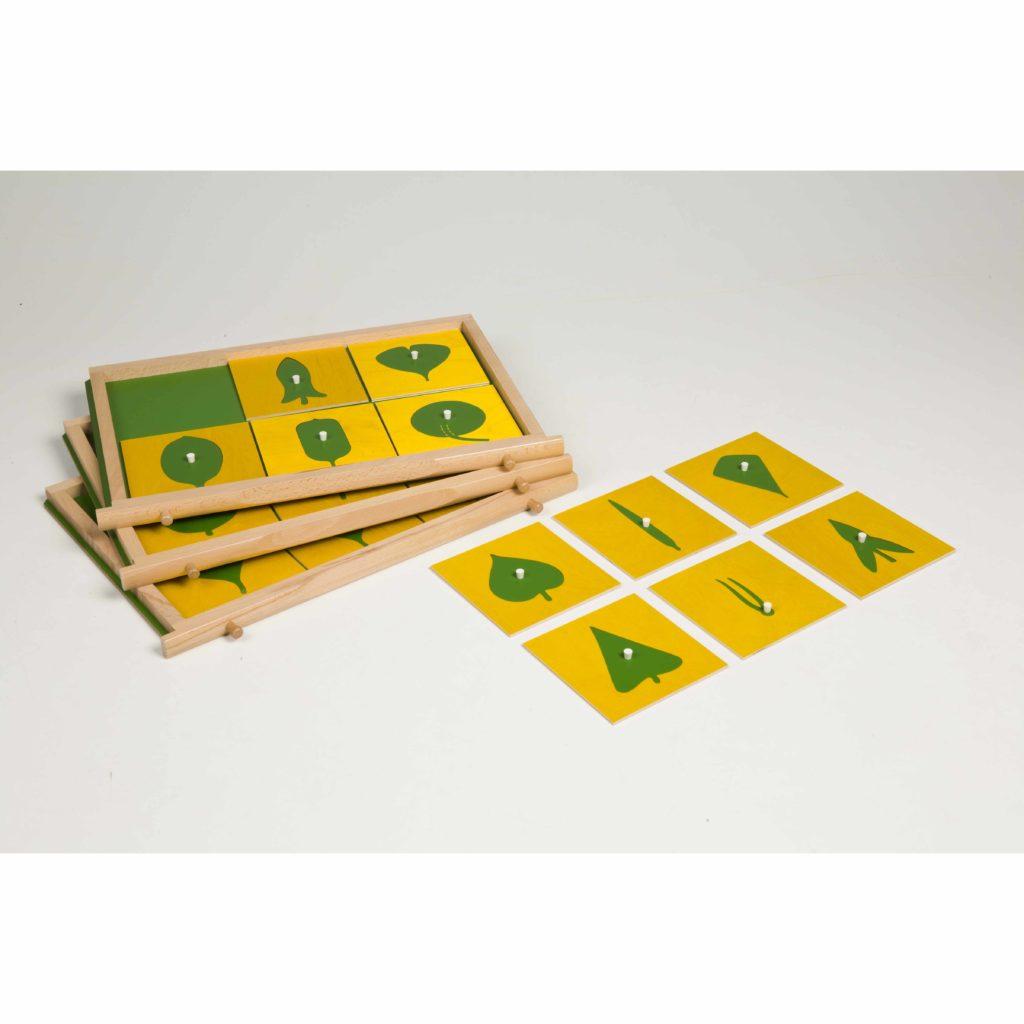 Contents Of The Botany Cabinet-produs original Nienhuis Montessori-prin Didactopia by Evertoys