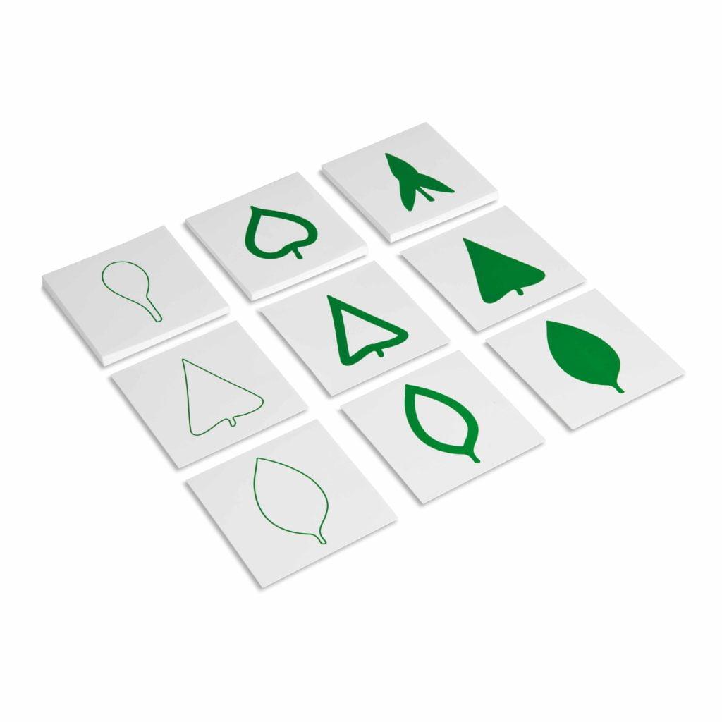 Leaf Cards-produs original Nienhuis Montessori-prin Didactopia by Evertoys
