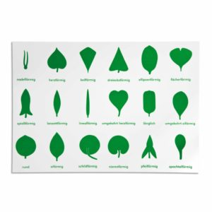 Lernplakat Botanische Kommode (German version)-produs original Nienhuis Montessori-prin Didactopia by Evertoys