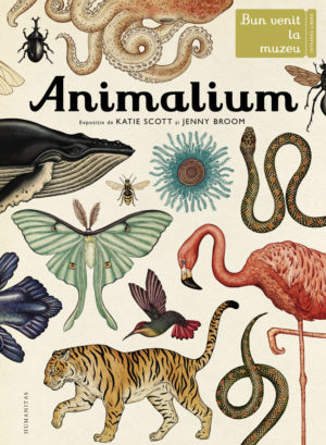 Animalium. Bun venit la muzeu. Intrarea liberă - Jenny Broom, Katie Scott. Humanitas prin Didactopia