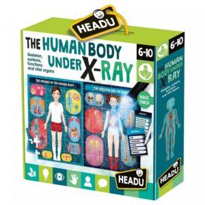 Corpul uman sub radiografie - Puzzle educativ copii. Headu