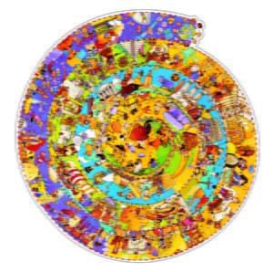 Puzzle observatie Djeco - Evolutie-DJECO-Didactopia